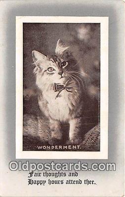 cat002076 - Wonderment  Postcard Post Card