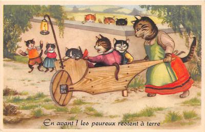 cat002109 - Cat Post Card Old Vintage Antique