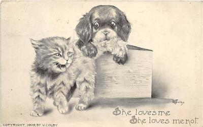cat002142 - Cat Post Card Old Vintage Antique