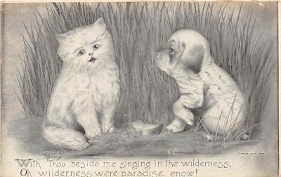 cat002145 - Cat Post Card Old Vintage Antique