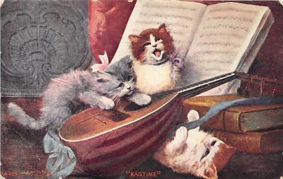 cat002147 - Cat Post Card Old Vintage Antique