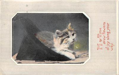 cat002163 - Cat Post Card Old Vintage Antique