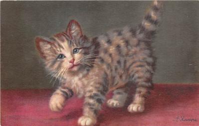 cat002217 - Cat Post Card Old Vintage Antique