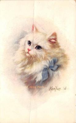 cat002240 - Cat Post Card Old Vintage Antique