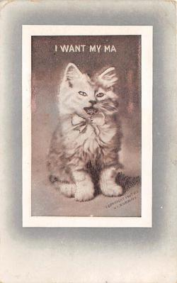cat002243 - Cat Post Card Old Vintage Antique
