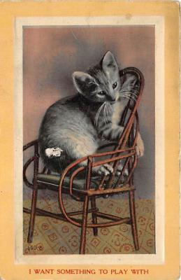 cat002271 - Cat Post Card Old Vintage Antique