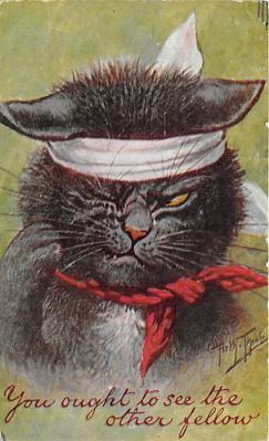 cat002291 - Cat Post Card Old Vintage Antique