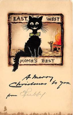 cat002297 - Cat Post Card Old Vintage Antique