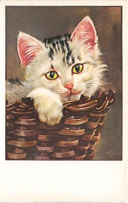 cat002347 - Cat Post Card Old Vintage Antique