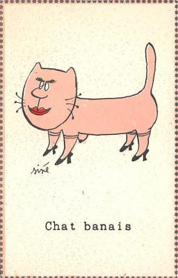 cat002350 - Cat Post Card Old Vintage Antique