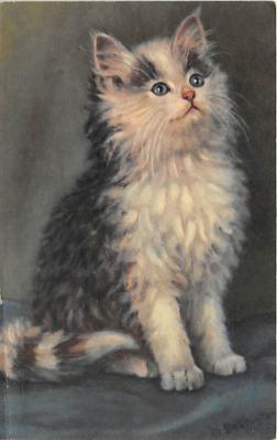 cat002357 - Cat Post Card Old Vintage Antique
