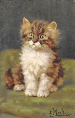 cat002367 - Cat Post Card Old Vintage Antique