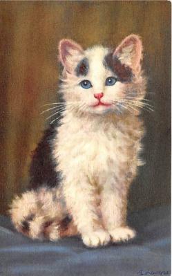 cat002372 - Cat Post Card Old Vintage Antique