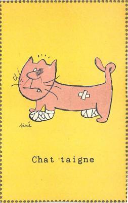 cat002379 - Cat Post Card Old Vintage Antique