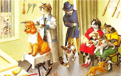 cat254234 - Cat Post Card Old Vintage Antique