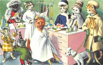 cat254242 - Cat Post Card Old Vintage Antique