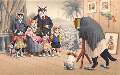 cat254282 - Cat Post Card Old Vintage Antique