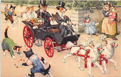 cat254325 - Cat Post Card Old Vintage Antique