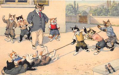 cat254357 - Cat Post Card Old Vintage Antique