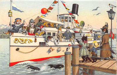 cat254399 - Cat Post Card Old Vintage Antique