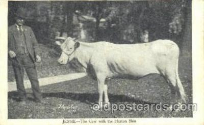 Jessie, Cow with Human Skin