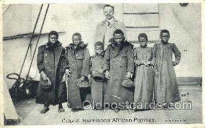 Colonel Harrisons African Pigmies