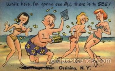 com001329 - Ossining, NY USAWhile here im gonna see all there is to see Comic Postcard Post Card