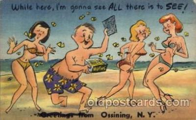 com001331 - Ossining, NY USAWhile here im gonna see all there is to see Comic Postcard Post Card