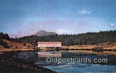 cou100417 - Afognak Island, Alaska Covered Bridge Postcard Post Card Old Vintage Antique