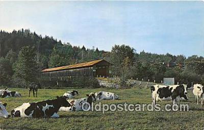cou100771 - Covered Bridge Vintage Postcard
