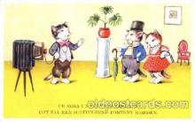 cam001084 - Dressed Cats, Camera Postcard Post Card