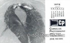 cam001245 - Camera Postcard, Post Card Old Vintage Antique