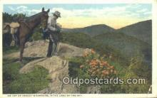 cam001556 - Craggy Mountains, North Carolina, USA Camera Postcard, Post Card Old Vintage Antique