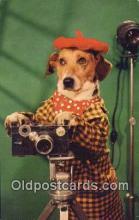 cam001872 - Camera Postcard, Post Card Old Vintage Antique