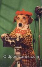 cam001877 - Camera Postcard, Post Card Old Vintage Antique