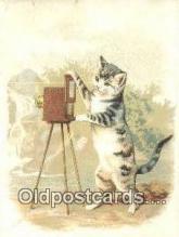 cam001933 - Camera Tradecard Old Vintage Antique