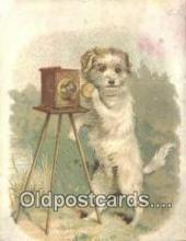 cam001935 - Camera Tradecard Old Vintage Antique