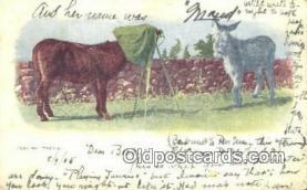 cam001947 - Camera Postcard, Post Card Old Vintage Antique