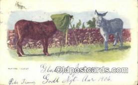 cam001951 - Camera Postcard, Post Card Old Vintage Antique