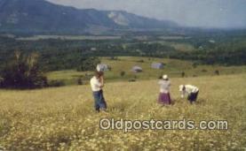 cam100036 - Sunrise Valley, Nova Scotia Camera Postcard Post Card Old Vintage Antique