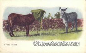 cam100067 - Camera Postcard Post Card Old Vintage Antique