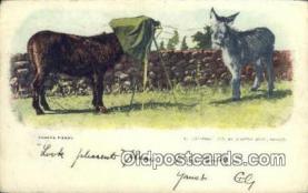 cam100213 - Camera Postcard Post Card Old Vintage Antique