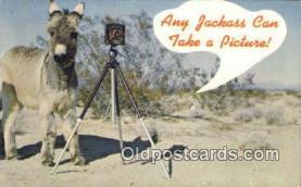 cam100227 - Camera Post Card Postcard Old Vintage Antique