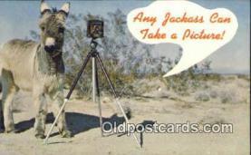 cam100228 - Camera Post Card Postcard Old Vintage Antique