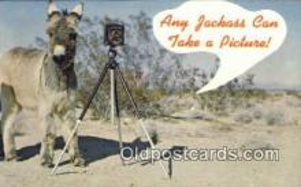 cam100229 - Camera Post Card Postcard Old Vintage Antique