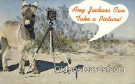 cam100230 - Camera Post Card Postcard Old Vintage Antique