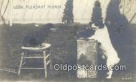 cam100242 - Camera Post Card Postcard Old Vintage Antique