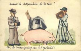 cam100244 - Camera Post Card Postcard Old Vintage Antique