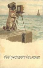 cam100339 - Camera Post Card Postcard Old Vintage Antique