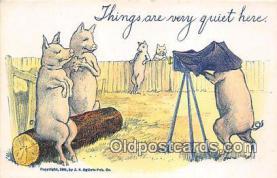 cam100516 - Camera Vintage Postcard